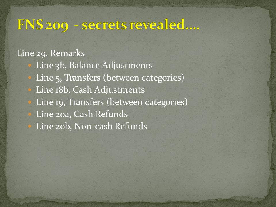 Line 29, Remarks Line 3b, Balance Adjustments Line 5, Transfers (between categories) Line 18b, Cash Adjustments Line 19, Transfers (between categories
