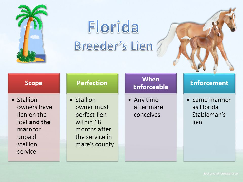 Scope Stallion owners have lien on the foal and the mare for unpaid stallion service Perfection Stallion owner must perfect lien within 18 months after the service in mare's county When Enforceable Any time after mare conceives Enforcement Same manner as Florida Stableman's lien