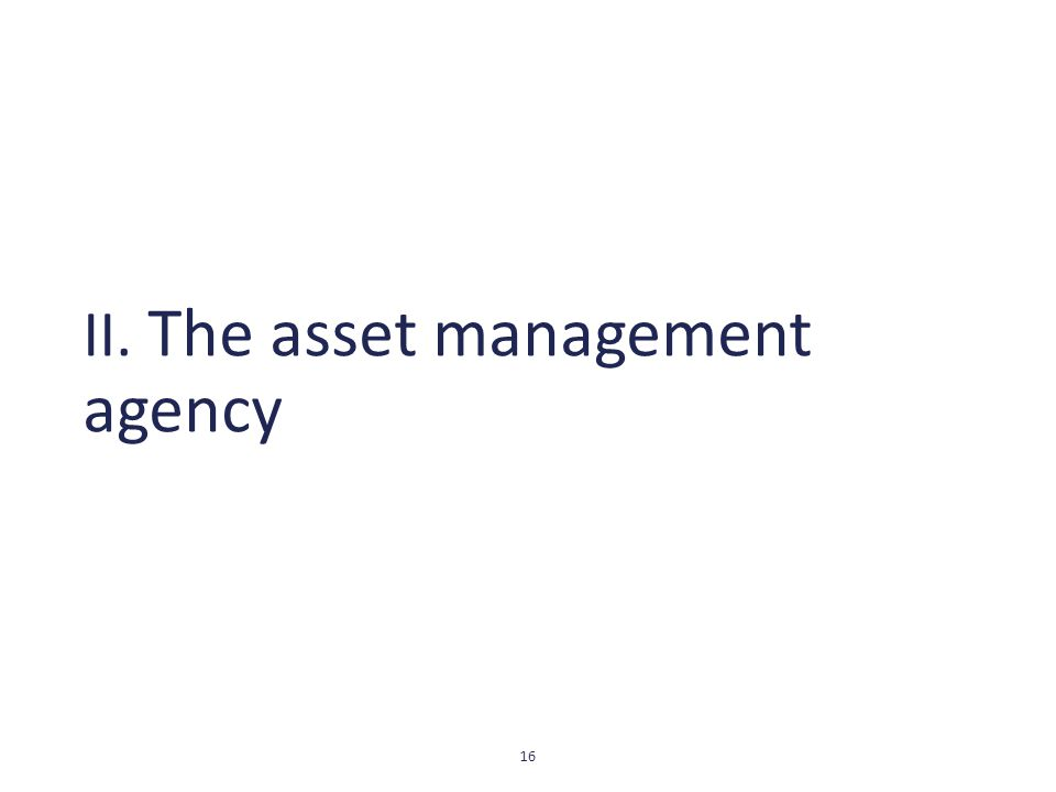 II. The asset management agency 16