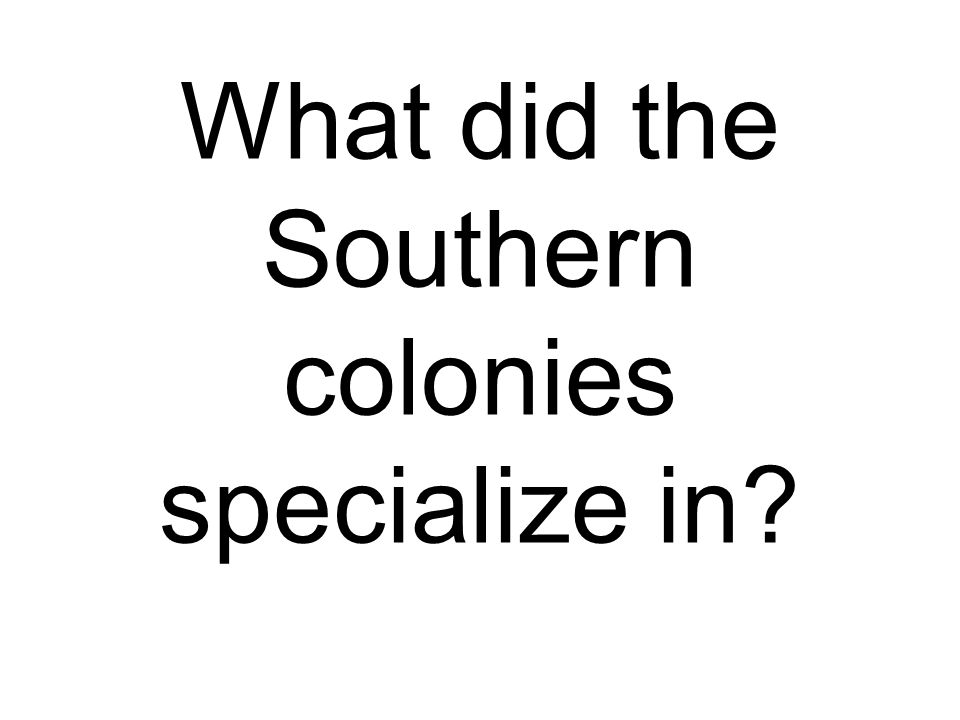What did the Southern colonies specialize in?