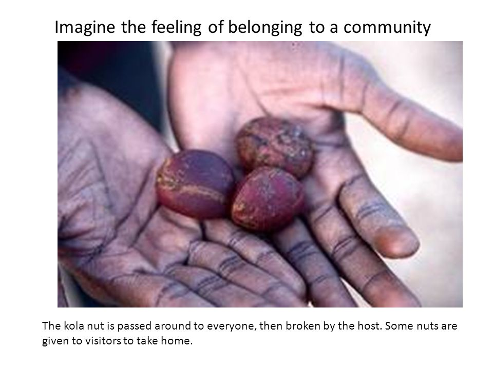 The kola nut is passed around to everyone, then broken by the host. Some nuts are given to visitors to take home. Imagine the feeling of belonging to