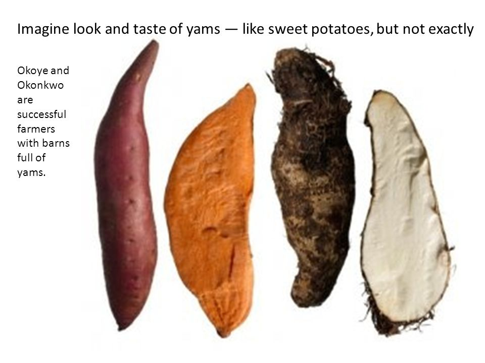 Okoye and Okonkwo are successful farmers with barns full of yams. Imagine look and taste of yams — like sweet potatoes, but not exactly