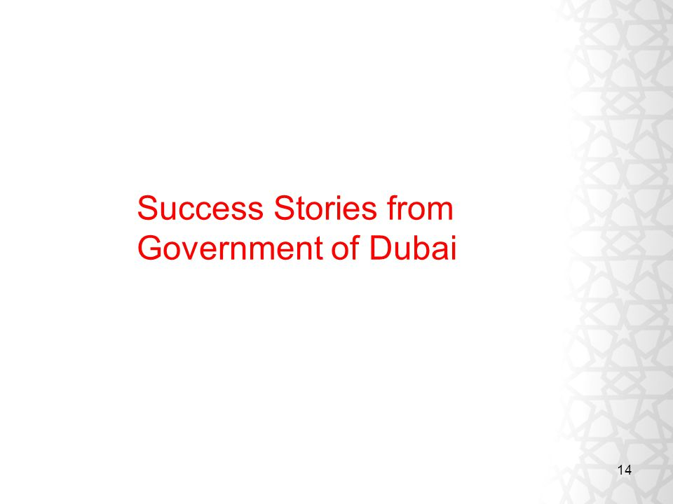 14 Success Stories from Government of Dubai