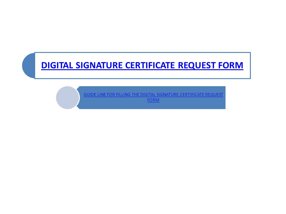 DIGITAL SIGNATURE CERTIFICATE REQUEST FORM GUIDE LINE FOR FILLING THE DIGITAL SIGNATURE CERTIFICATE REQUEST FORM