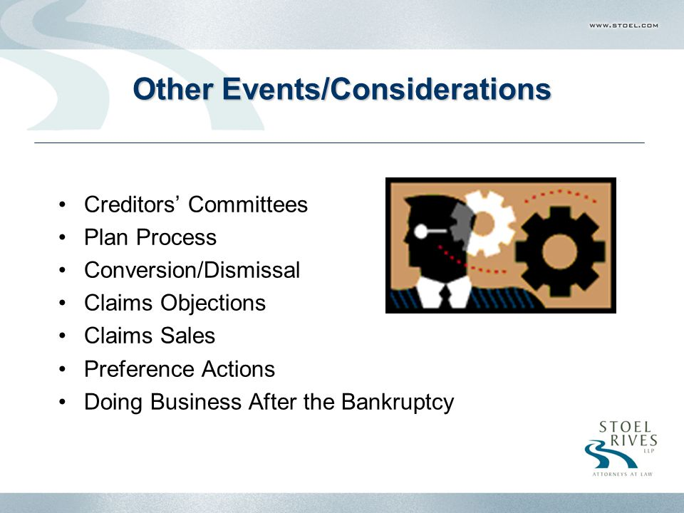 Other Events/Considerations Creditors' Committees Plan Process Conversion/Dismissal Claims Objections Claims Sales Preference Actions Doing Business After the Bankruptcy