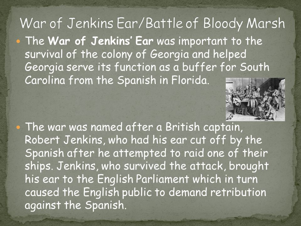 The War of Jenkins' Ear was important to the survival of the colony of Georgia and helped Georgia serve its function as a buffer for South Carolina from the Spanish in Florida.