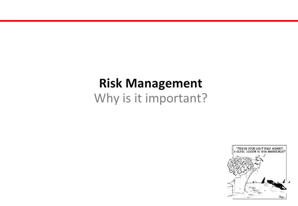 Risk Management Why is it important