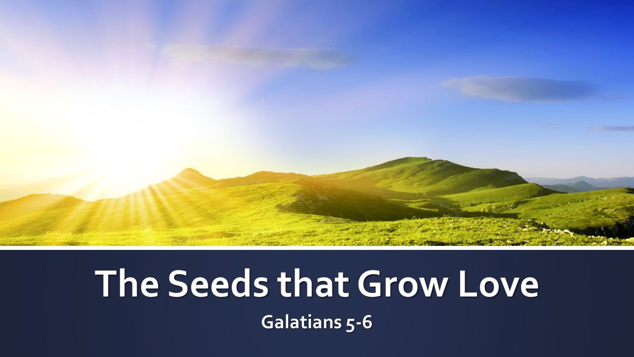 The Seeds that Grow Love Galatians 5-6