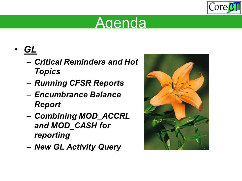 Agenda GL –Critical Reminders and Hot Topics –Running CFSR Reports –Encumbrance Balance Report –Combining MOD_ACCRL and MOD_CASH for reporting –New GL