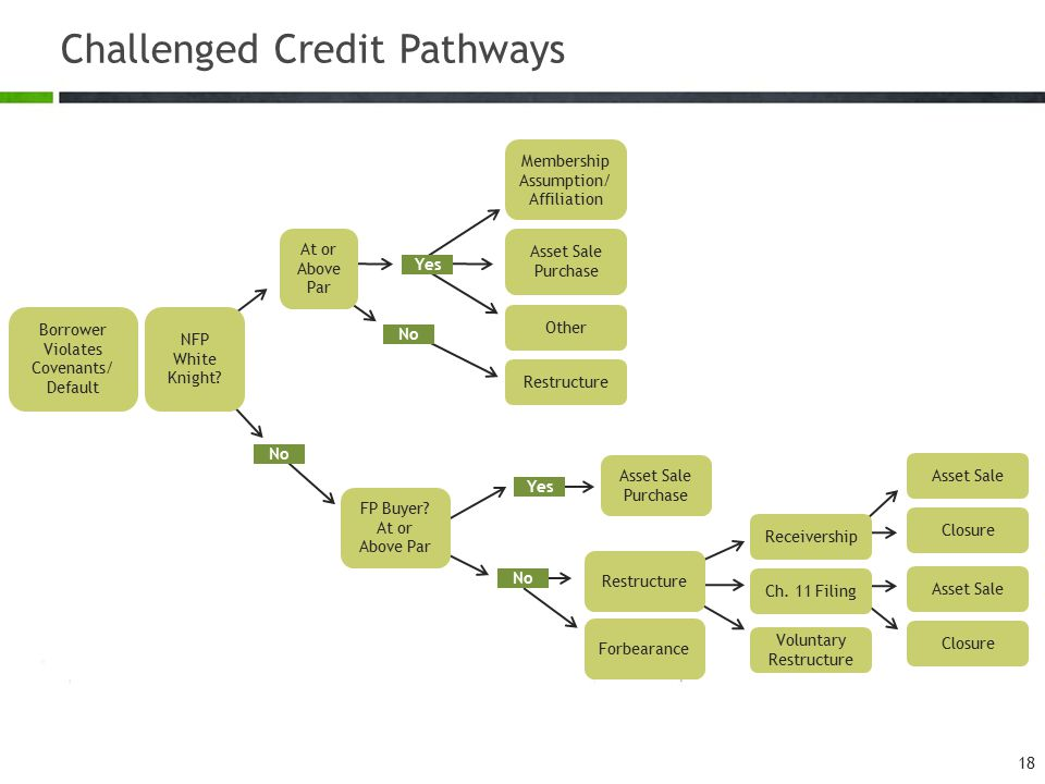 Challenged Credit Pathways 18 Borrower Violates Covenants/ Default NFP White Knight? Membership Assumption/ Affiliation Asset Sale Purchase Other At o