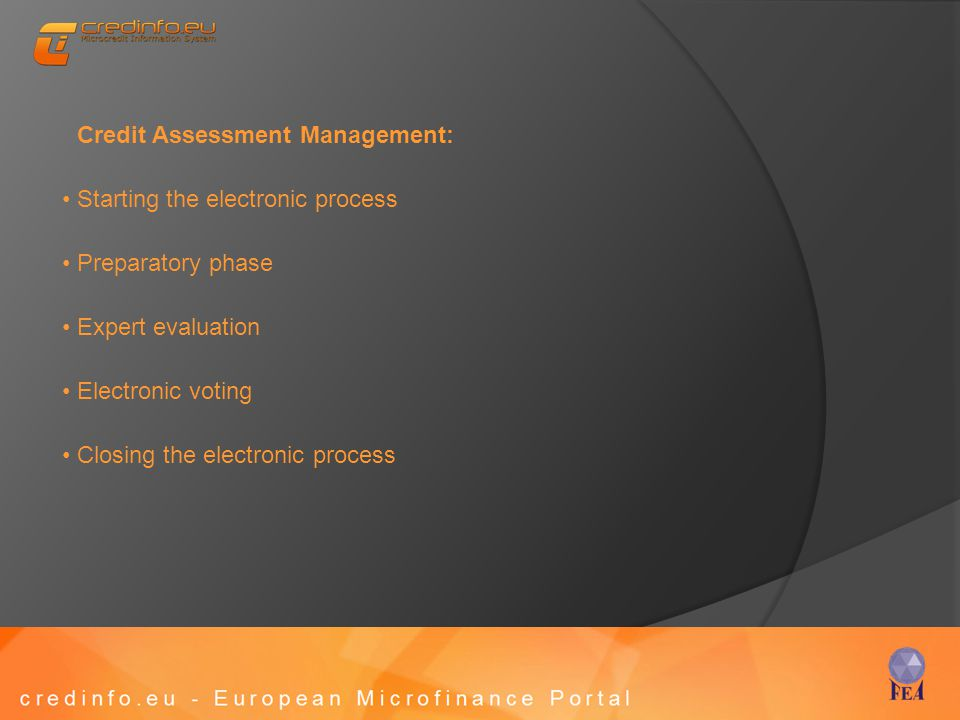 Credit Assessment Management: Starting the electronic process Preparatory phase Expert evaluation Electronic voting Closing the electronic process