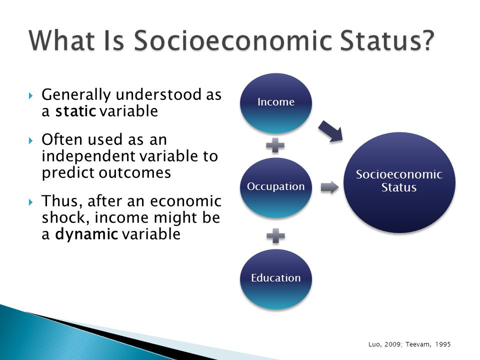  Generally understood as a static variable  Often used as an independent variable to predict outcomes  Thus, after an economic shock, income might be a dynamic variable Luo, 2009; Teevam, 1995 Income Occupation Education Socioeconomic Status