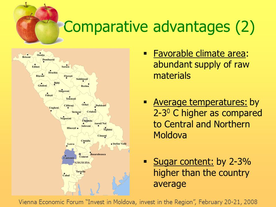 Comparative advantages (2)  Favorable climate area: abundant supply of raw materials  Average temperatures: by 2-3 0 C higher as compared to Central and Northern Moldova  Sugar content: by 2-3% higher than the country average Vienna Economic Forum Invest in Moldova, invest in the Region , February 20-21, 2008