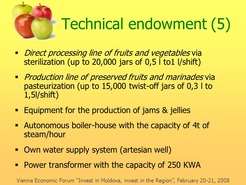 Technical endowment (5)  Direct processing line of fruits and vegetables via sterilization (up to 20,000 jars of 0,5 l to1 l/shift)  Production line of preserved fruits and marinades via pasteurization (up to 15,000 twist-off jars of 0,3 l to 1,5l/shift)  Equipment for the production of jams & jellies  Autonomous boiler-house with the capacity of 4t of steam/hour  Own water supply system (artesian well)  Power transformer with the capacity of 250 KWA Vienna Economic Forum Invest in Moldova, invest in the Region , February 20-21, 2008