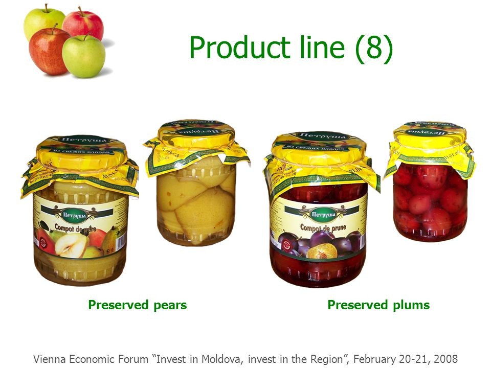 Product line (8) Preserved pearsPreserved plums Vienna Economic Forum Invest in Moldova, invest in the Region , February 20-21, 2008