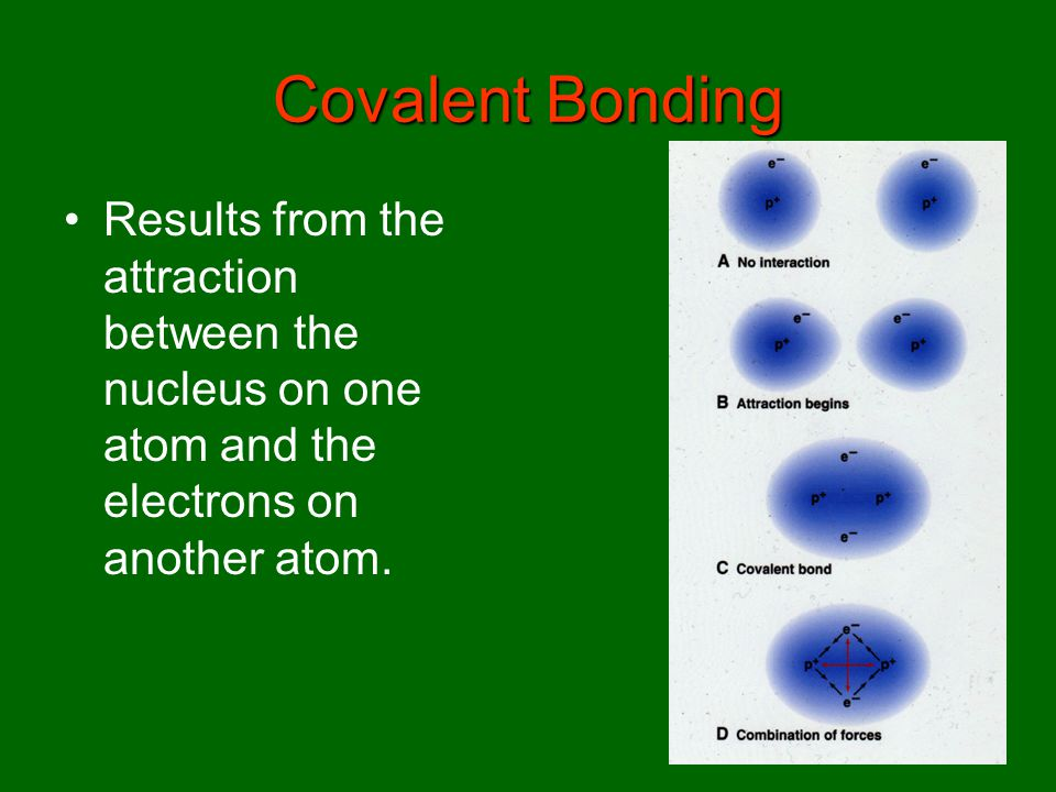 Covalent Bonding Results from the attraction between the nucleus on one atom and the electrons on another atom.