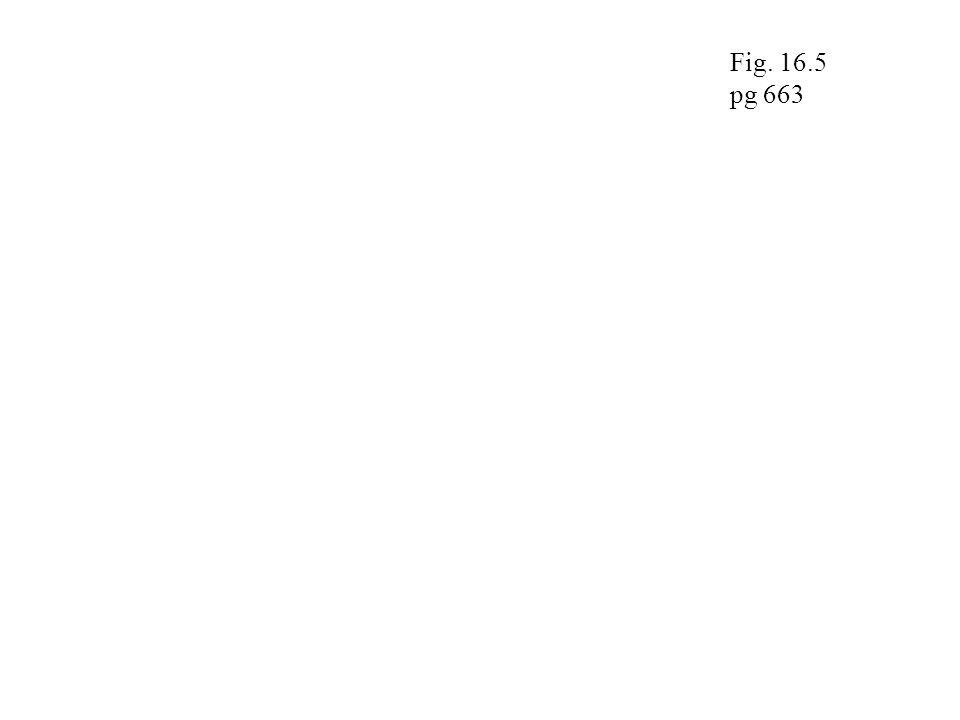 Fig. 16.5 pg 663
