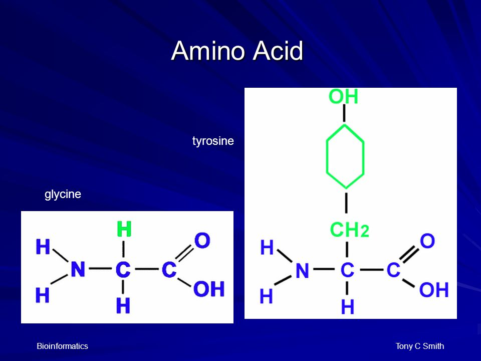 Bioinformatics Tony C Smith Amino Acid glycine tyrosine