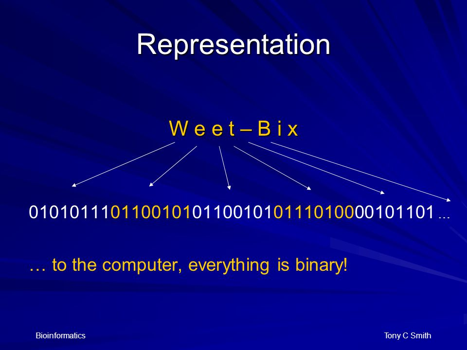 Bioinformatics Tony C Smith Representation W e e t – B i x 0101011101100101011001010111010000101101 … … to the computer, everything is binary!