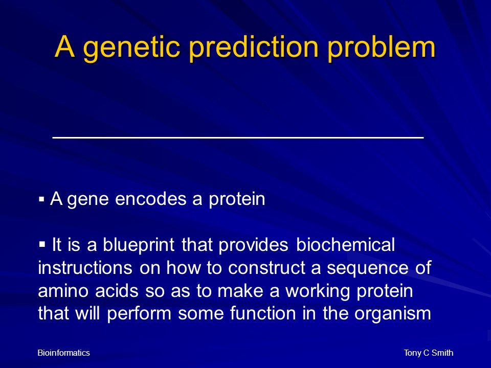 Bioinformatics Tony C Smith A genetic prediction problem  A gene encodes a protein  It is a blueprint that provides biochemical instructions on how to construct a sequence of amino acids so as to make a working protein that will perform some function in the organism