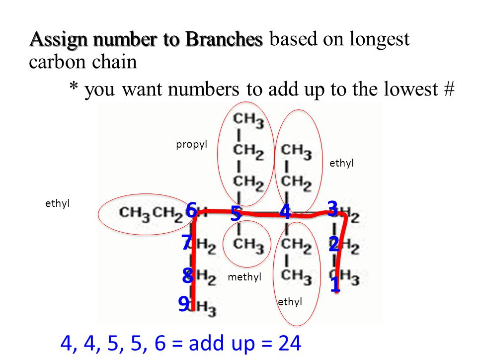 Assign number to Branches Assign number to Branches based on longest carbon chain * you want numbers to add up to the lowest # ethyl methyl propyl 1 2