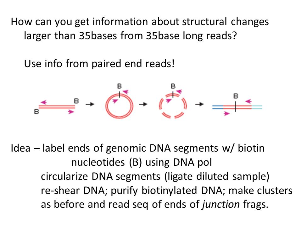 How can you get information about structural changes larger than 35bases from 35base long reads? Use info from paired end reads! Idea – label ends of