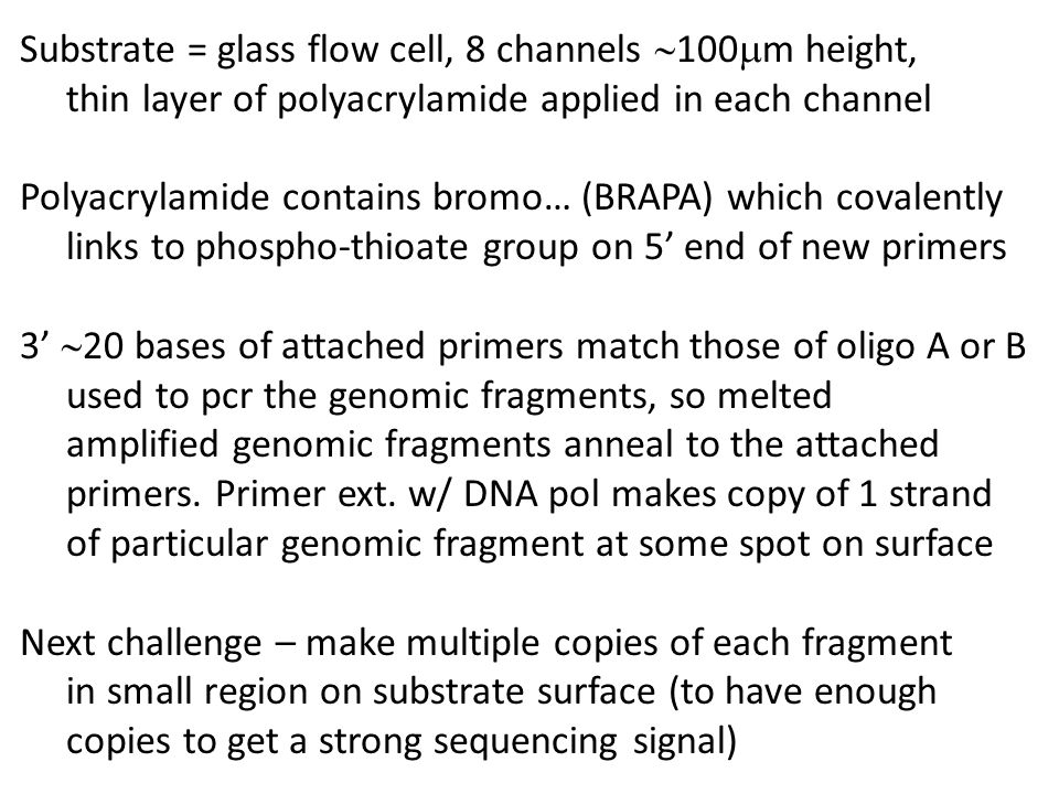 Substrate = glass flow cell, 8 channels  100  m height, thin layer of polyacrylamide applied in each channel Polyacrylamide contains bromo… (BRAPA)