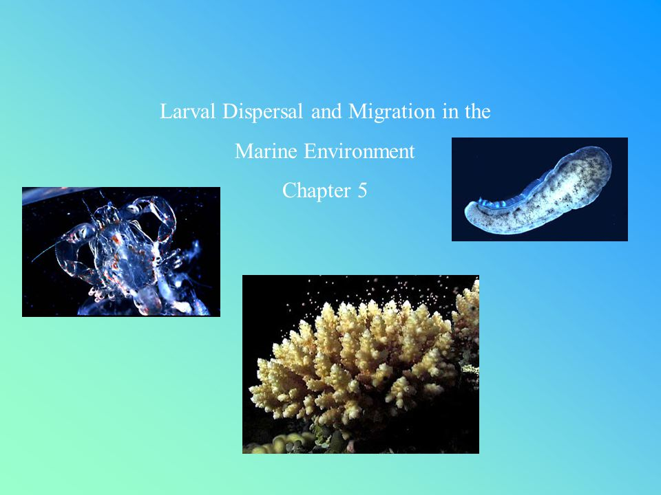 Larval Dispersal and Migration in the Marine Environment Chapter 5