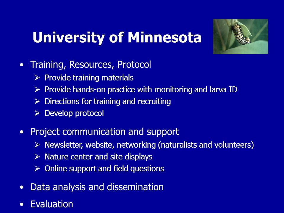 University of Minnesota Training, Resources, Protocol  Provide training materials  Provide hands-on practice with monitoring and larva ID  Directions for training and recruiting  Develop protocol Project communication and support  Newsletter, website, networking (naturalists and volunteers)  Nature center and site displays  Online support and field questions Data analysis and dissemination Evaluation