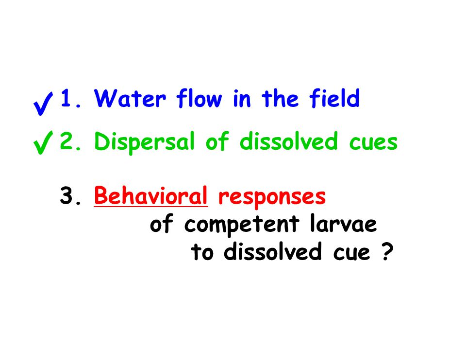 1. Water flow in the field 2. Dispersal of dissolved cues 3.