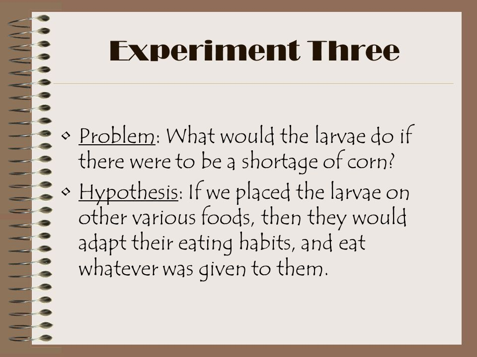 Experiment Three Problem: What would the larvae do if there were to be a shortage of corn.