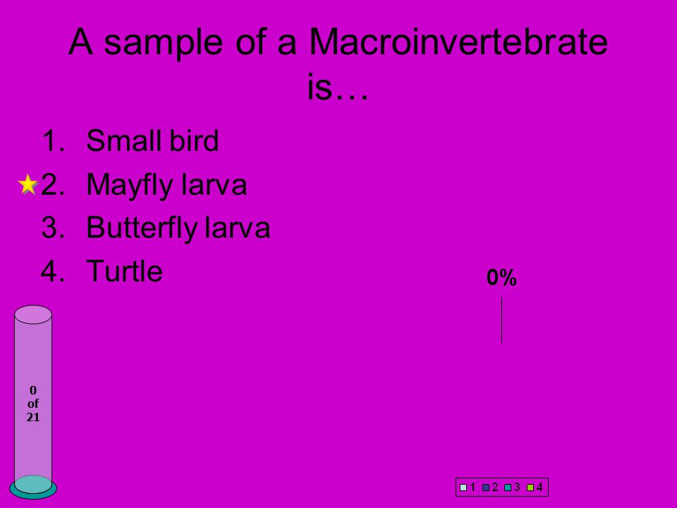 A sample of a Macroinvertebrate is… 1.Small bird 2.Mayfly larva 3.Butterfly larva 4.Turtle 0 of 21