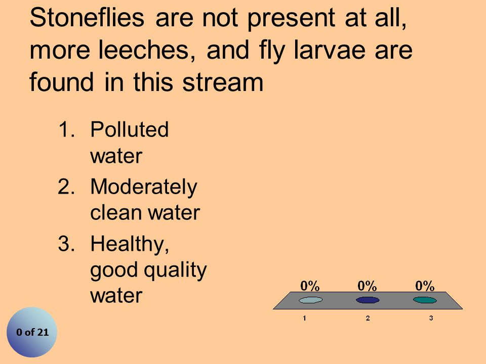 Stoneflies are not present at all, more leeches, and fly larvae are found in this stream 1.Polluted water 2.Moderately clean water 3.Healthy, good quality water 0 of 21