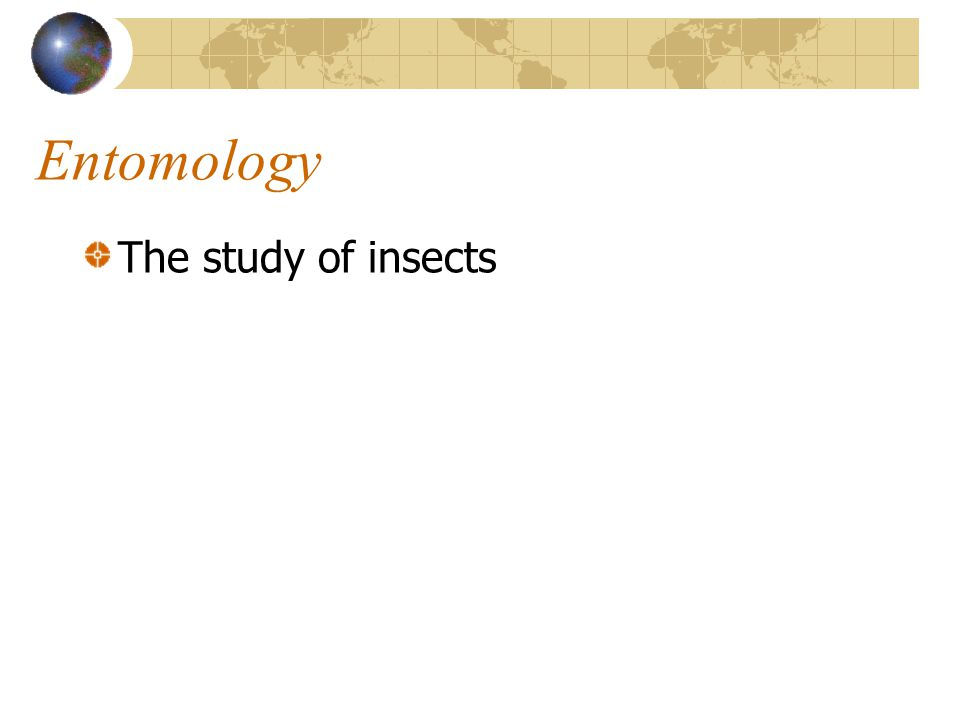Entomology The study of insects