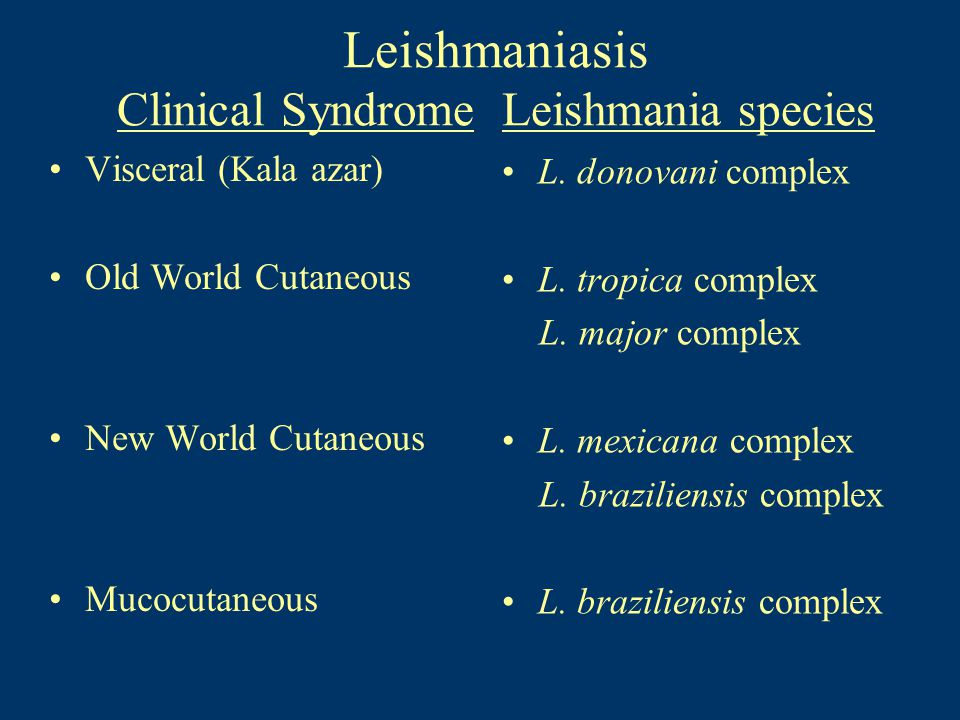 Leishmaniasis Clinical Syndrome Leishmania species Visceral (Kala azar) Old World Cutaneous New World Cutaneous Mucocutaneous L. donovani complex L. t