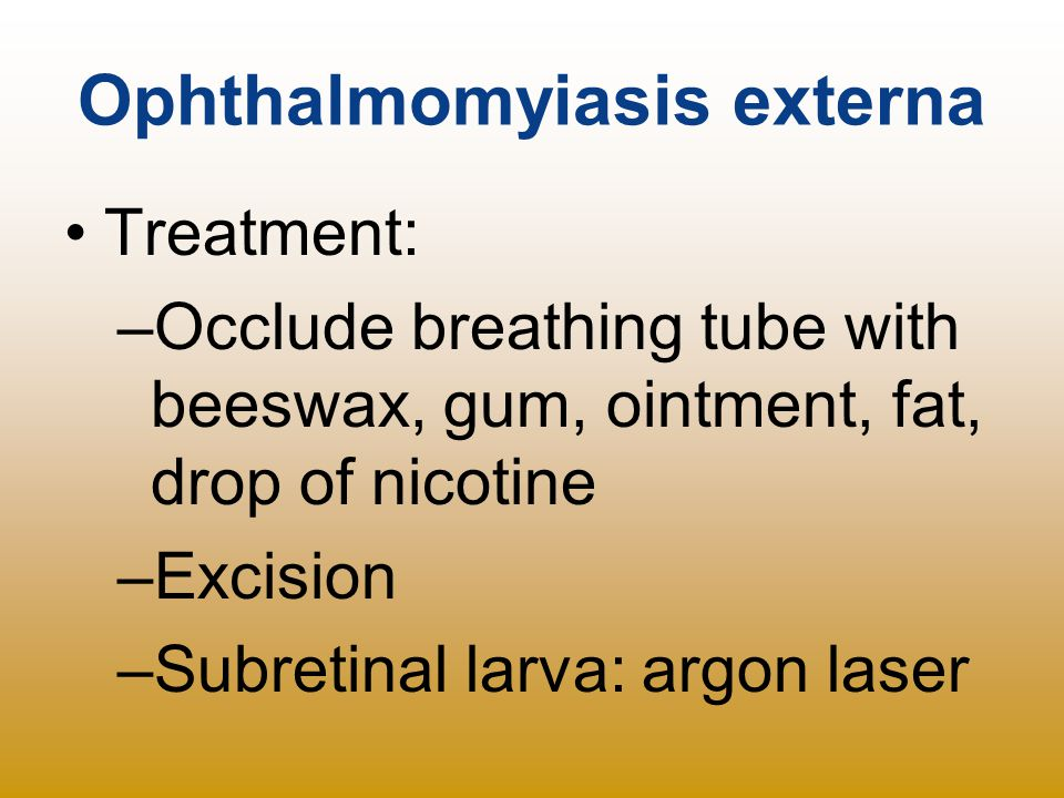 Ophthalmomyiasis externa Treatment: –Occlude breathing tube with beeswax, gum, ointment, fat, drop of nicotine –Excision –Subretinal larva: argon lase