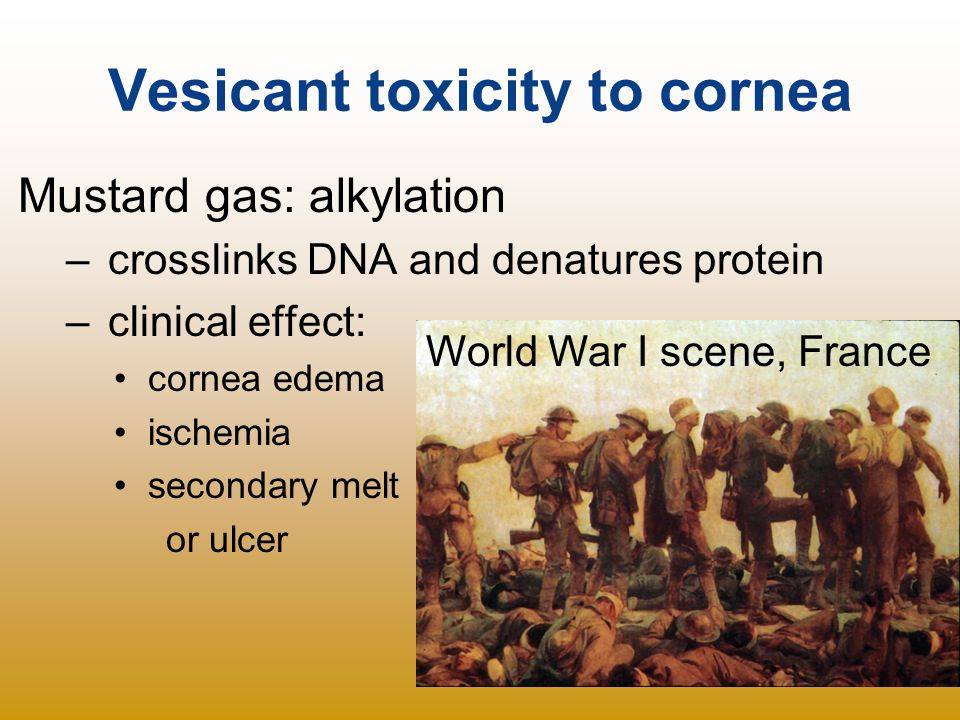 Vesicant toxicity to cornea Mustard gas: alkylation – crosslinks DNA and denatures protein – clinical effect: cornea edema ischemia secondary melt or
