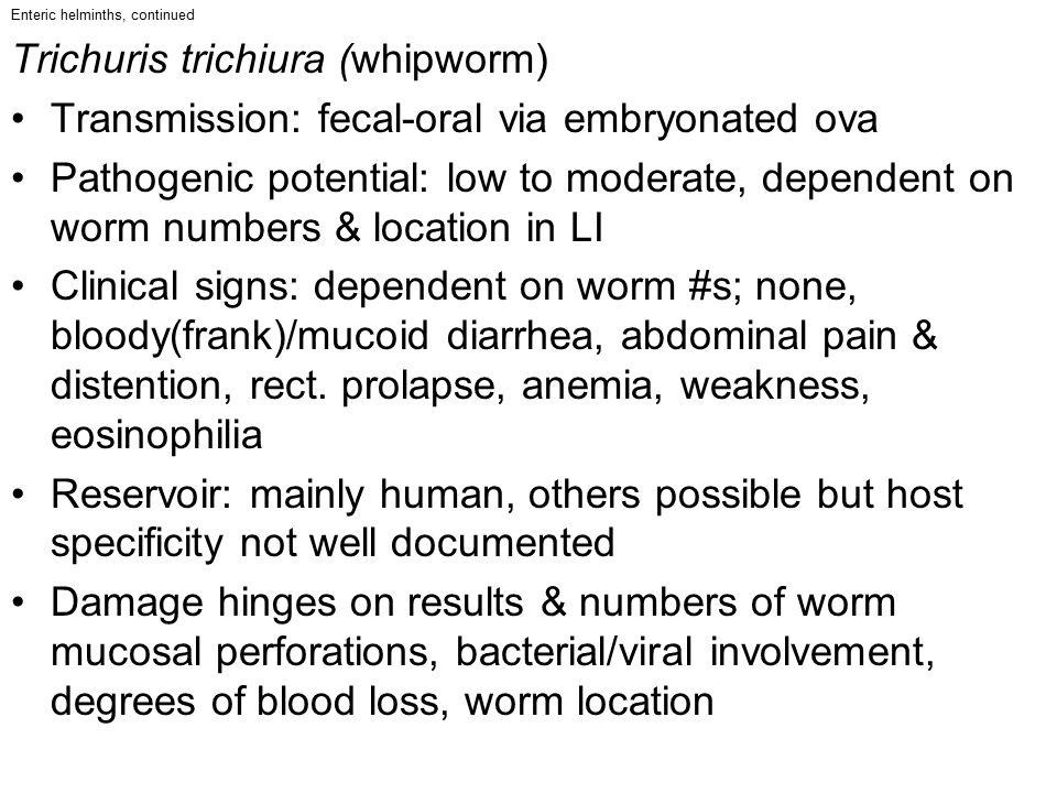 Enteric helminths, continued Trichuris trichiura (whipworm) Transmission: fecal-oral via embryonated ova Pathogenic potential: low to moderate, depend