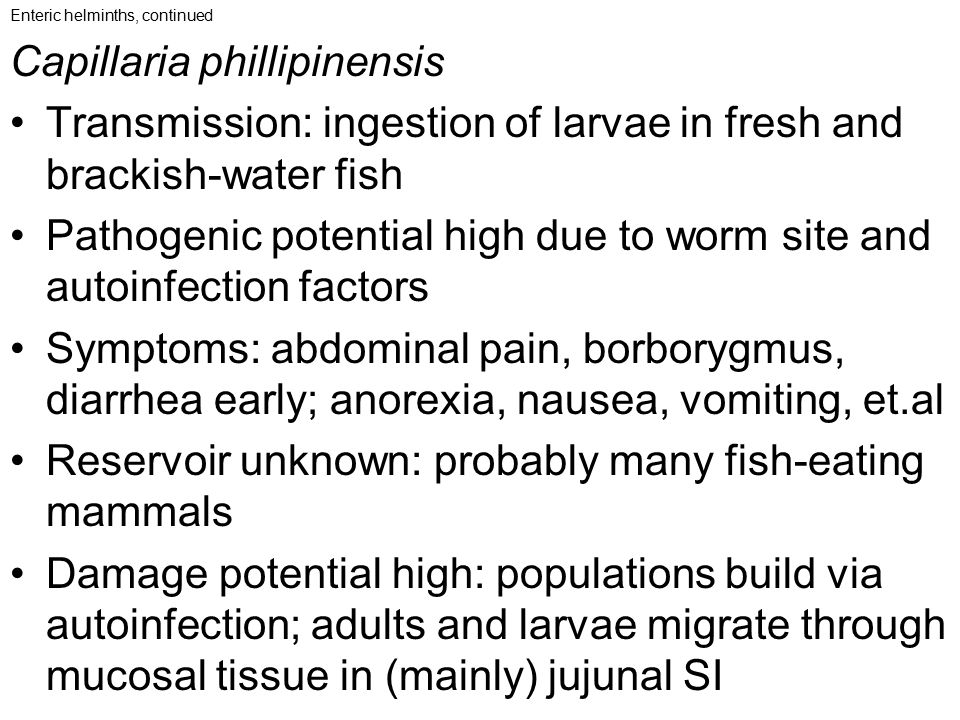 Enteric helminths, continued Capillaria phillipinensis Transmission: ingestion of larvae in fresh and brackish-water fish Pathogenic potential high du