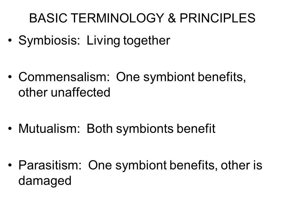 BASIC TERMINOLOGY & PRINCIPLES Symbiosis: Living together Commensalism: One symbiont benefits, other unaffected Mutualism: Both symbionts benefit Para