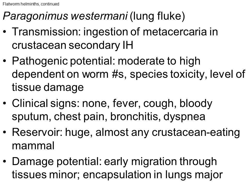 Flatworm helminths, continued Paragonimus westermani (lung fluke) Transmission: ingestion of metacercaria in crustacean secondary IH Pathogenic potent