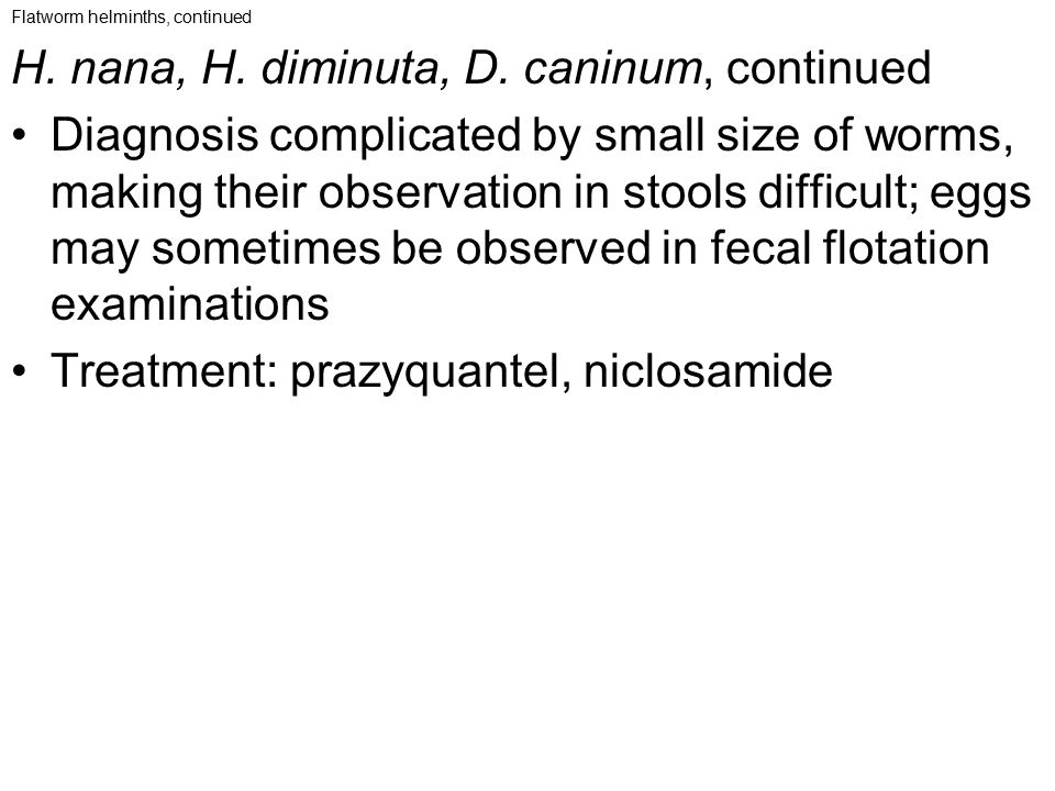 Flatworm helminths, continued H. nana, H. diminuta, D. caninum, continued Diagnosis complicated by small size of worms, making their observation in st