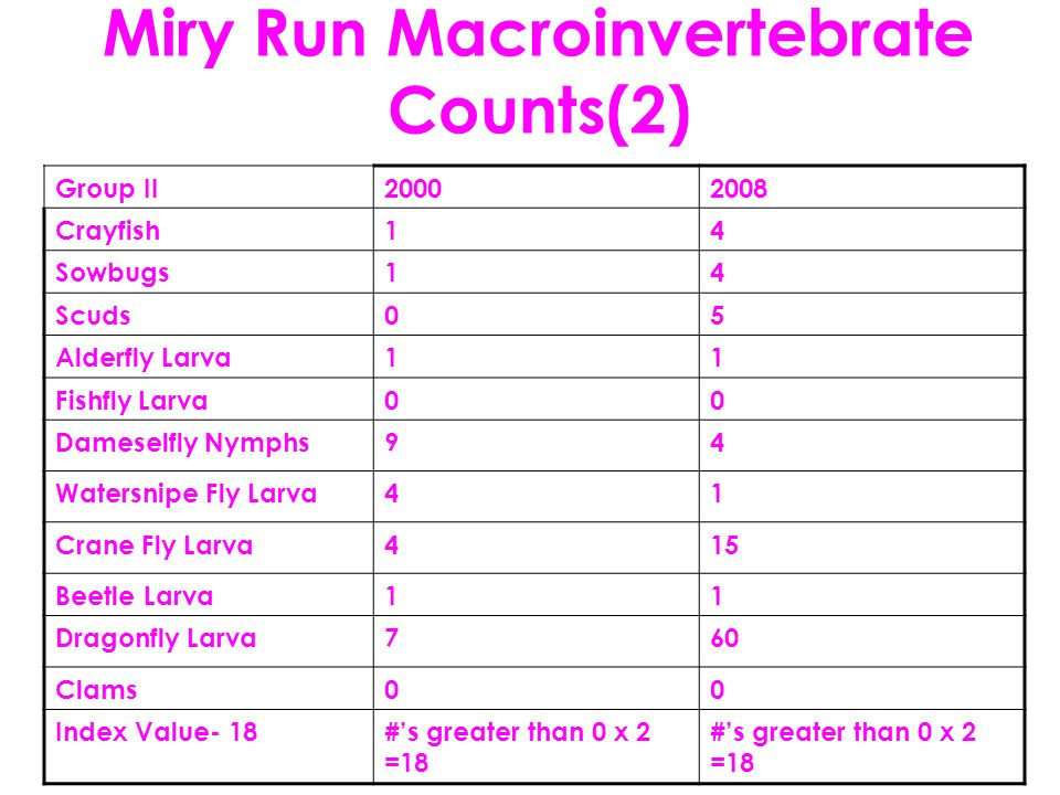 Miry Run Macroinvertebrate Counts(2) Group II20002008 Crayfish14 Sowbugs14 Scuds05 Alderfly Larva11 Fishfly Larva00 Dameselfly Nymphs94 Watersnipe Fly Larva41 Crane Fly Larva415 Beetle Larva11 Dragonfly Larva760 Clams00 Index Value- 18#'s greater than 0 x 2 =18