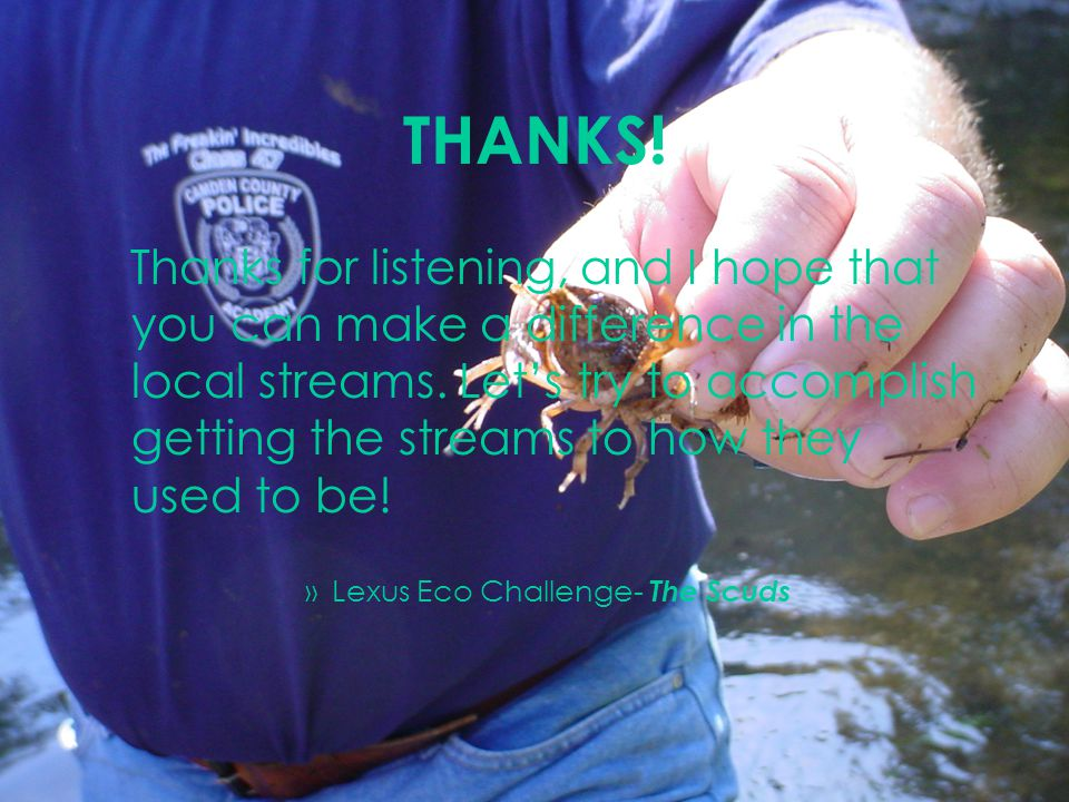 THANKS. Thanks for listening, and I hope that you can make a difference in the local streams.