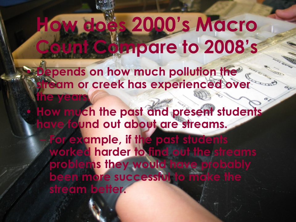 How does 2000's Macro Count Compare to 2008's Depends on how much pollution the stream or creek has experienced over the years.