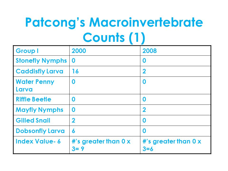 Patcong's Macroinvertebrate Counts (1) Group I20002008 Stonefly Nymphs00 Caddisfly Larva162 Water Penny Larva 00 Riffle Beetle00 Mayfly Nymphs02 Gilled Snail20 Dobsonfly Larva60 Index Value- 6#'s greater than 0 x 3= 9 #'s greater than 0 x 3=6
