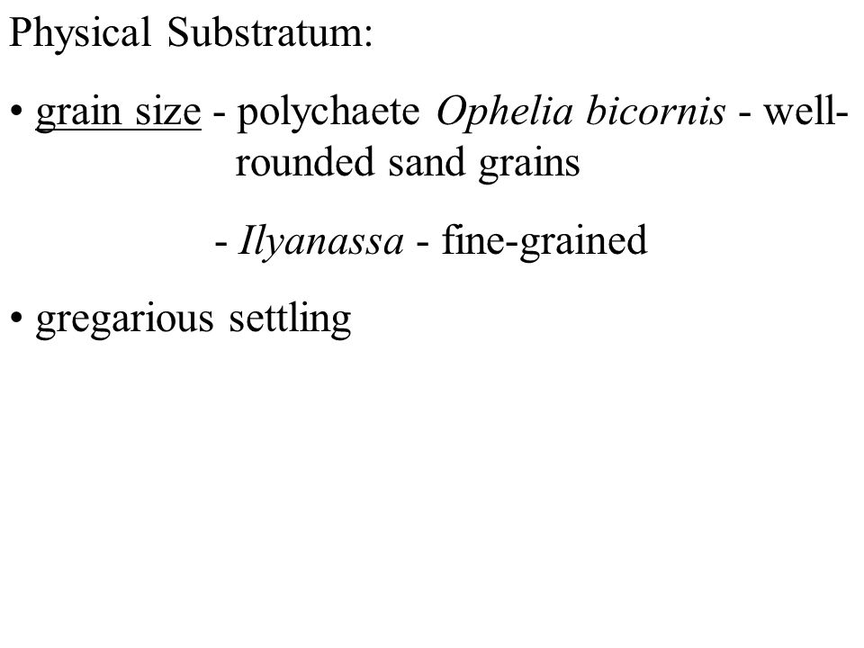 Physical Substratum: grain size - polychaete Ophelia bicornis - well- rounded sand grains - Ilyanassa - fine-grained gregarious settling