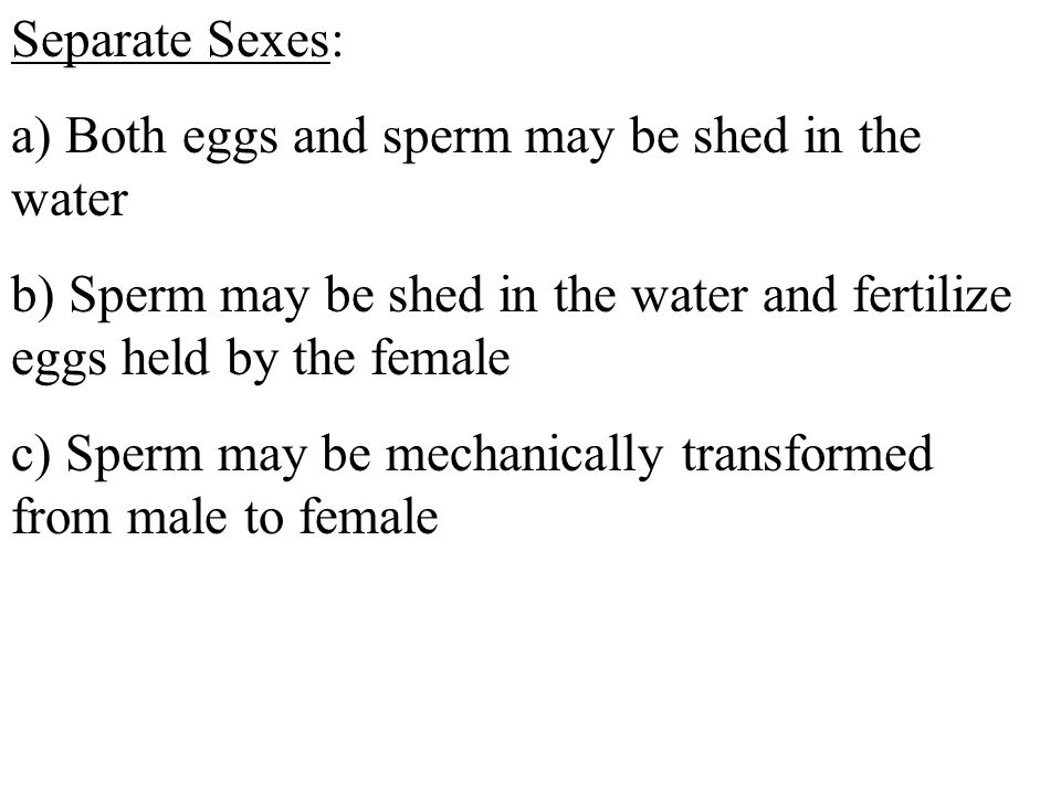 Separate Sexes: a) Both eggs and sperm may be shed in the water b) Sperm may be shed in the water and fertilize eggs held by the female c) Sperm may be mechanically transformed from male to female