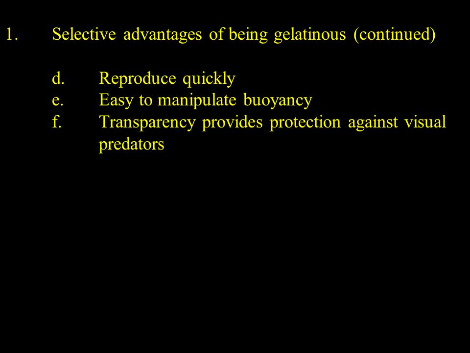 1.Selective advantages of being gelatinous (continued) d.Reproduce quickly e.Easy to manipulate buoyancy f.Transparency provides protection against visual predators