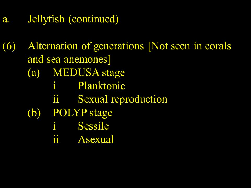 a.Jellyfish (continued) (6)Alternation of generations [Not seen in corals and sea anemones] (a)MEDUSA stage iPlanktonic iiSexual reproduction (b)POLYP stage iSessile iiAsexual